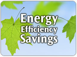 Efficiency Savings